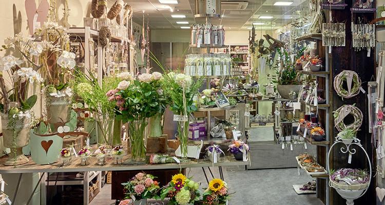 shoppyland_lavendula_shopheader_mobile